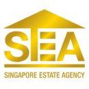 Singapore Estate Agency - Estate Agent